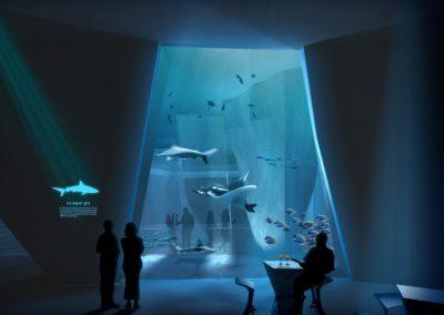 Aménagement & extension du Musée de la mer | Biarritz